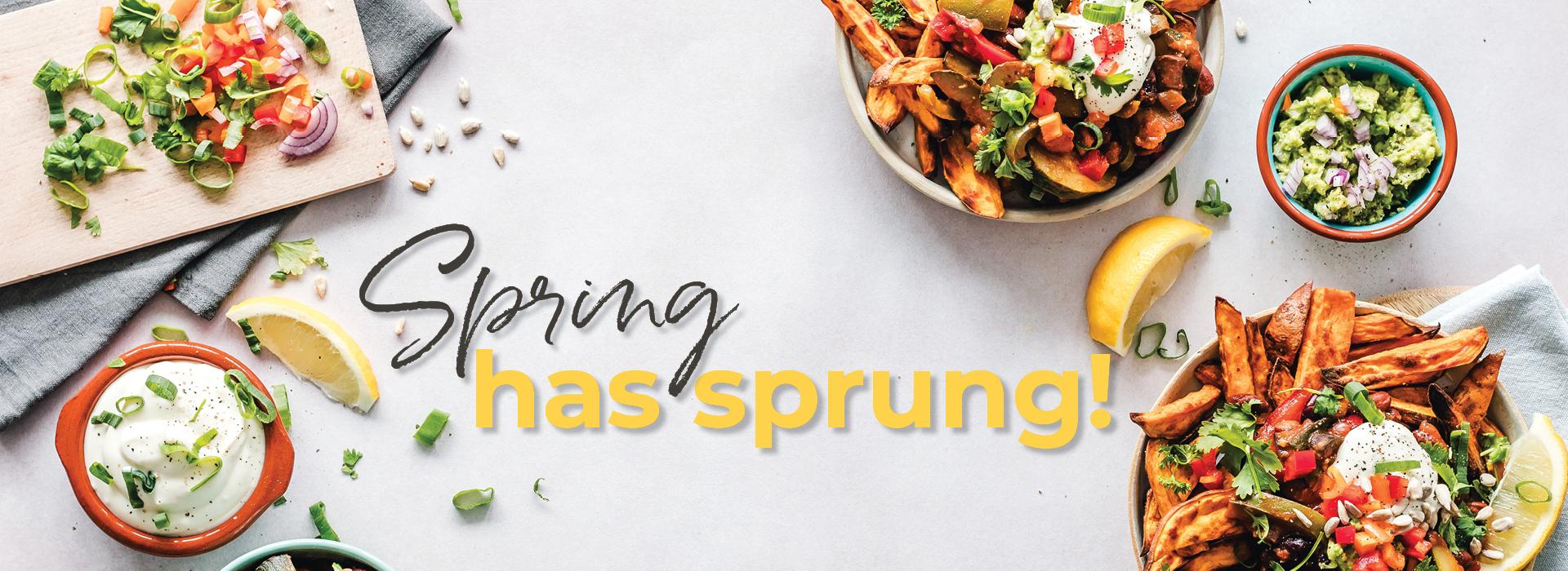 Hopper Retail Group Spring Has Sprung Web Banner 1920x700